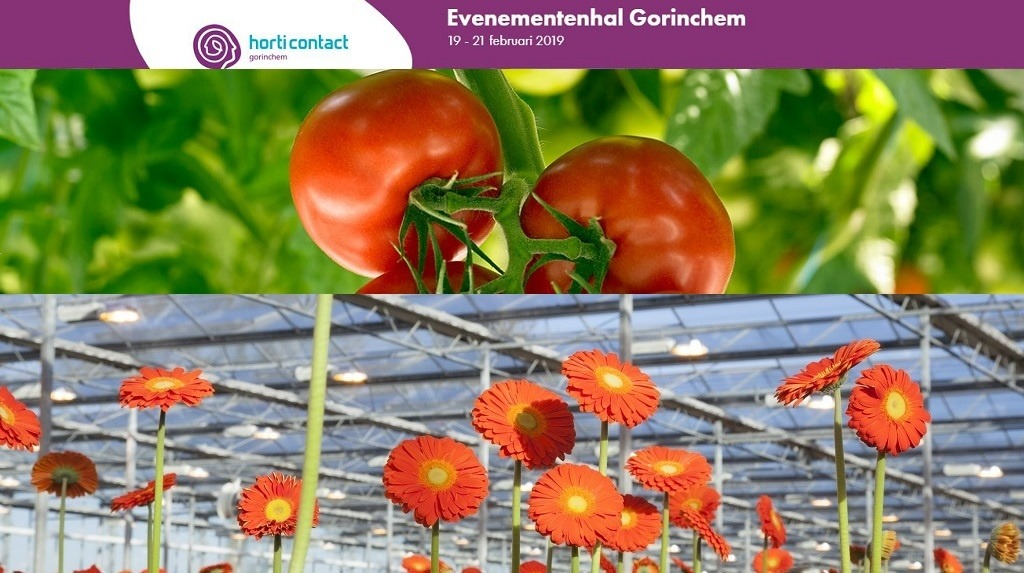 Syngenta Horticontact 2019